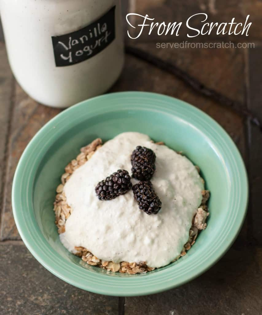 DIY Foods- Make your own Vanilla Yogurt from Scratch!