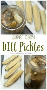 Super easy, SO delicious, Dill Pickles from scratch!