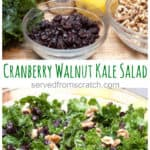 Cranberry Walnut Kale Salad, a healthy but holiday festive salad that will be the perfect healthy greens for any holiday gathering!