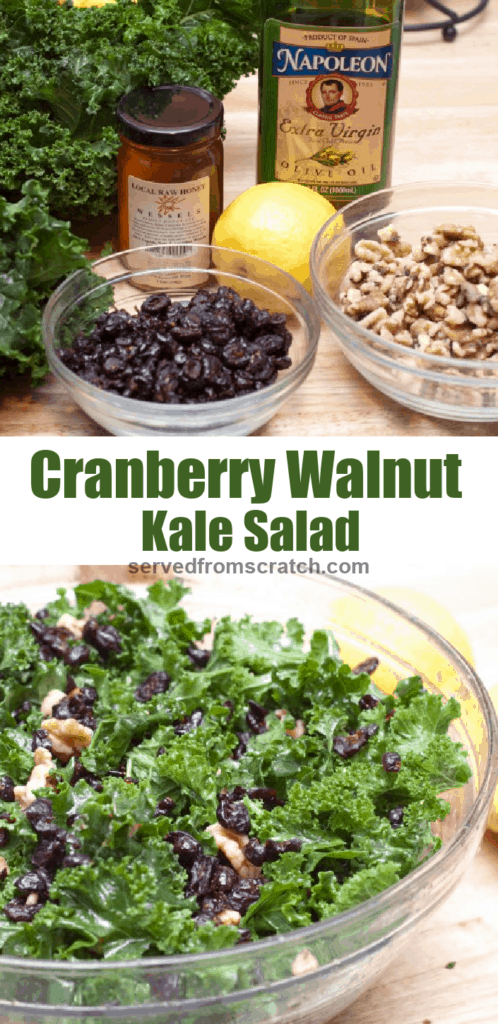 kale, cranberries, walnuts, honey, and a large bowl of it all mixed with Pinterest pin text.