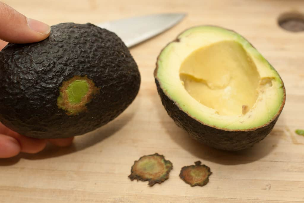 a halved avocado with a bit of the bottom cut off.