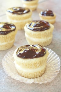 It's a Boston Cream Pie and cupcakes love child made with a from scratch vanilla pudding filling and homemade ganache for Boston Cream Pie Cupcakes!