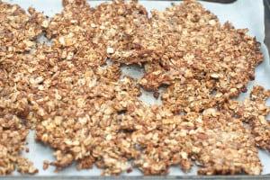 Copy Cat Kashi Go Lean Crunch Cereal!