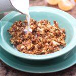 Copycat Kashi Go Lean Crunch Cereal