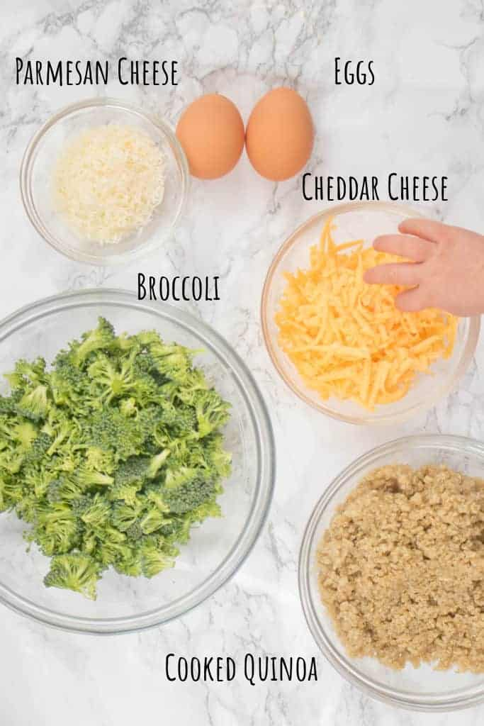 broccoli, parmesan, cheddar, eggs, cooked quinoa in bowls on a counter