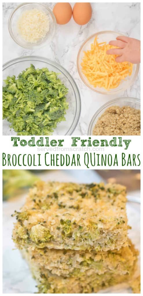 These Broccoli Cheddar Quinoa Bars are toddler tested and loved and are filled with tons of broccoli and protein, fiber rich quinoa so they're Mom approved, too!  #broccolicheddar #quinoa #bites #healthy #easy #kidfriendly