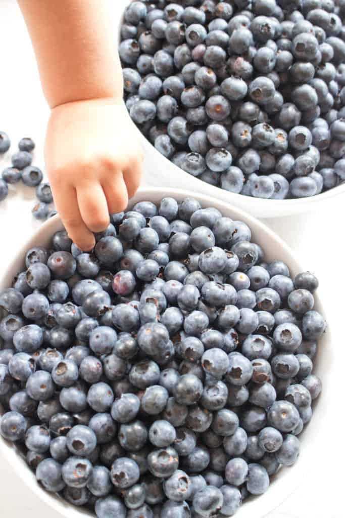 Fresh blueberries in bowls with baby hand reaching in