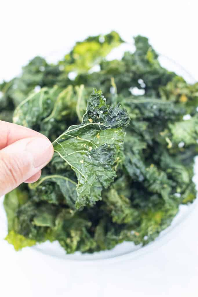 a hand holding a crispy kale chip