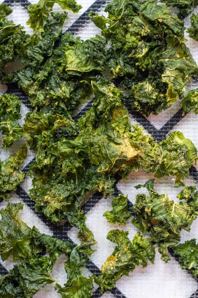 uncooked kale chips on a dehydrator tray