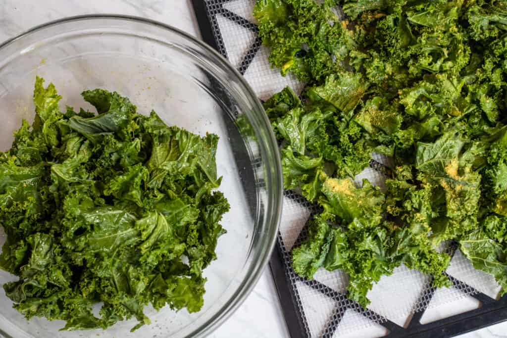 a bowl of kale and a dehydrator tray of uncooked kale chips
