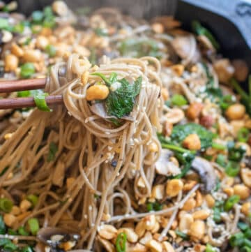 cast iron of noodles with spinach, mushrooms, topped with peanuts and scallions chopsticks holding up noodles.